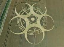 crop circles (134)