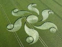 crop circles (179)