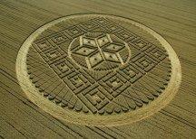 crop circles (222)