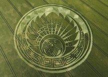 crop circles (226)