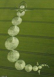 crop circles (237)