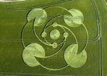 crop circles (291)