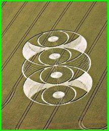 crop circles (35)