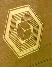 crop circles (4)