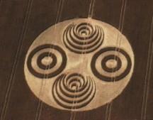 crop circles (41)