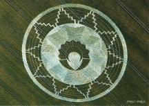 crop circles (42)