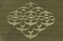 crop circles (66)